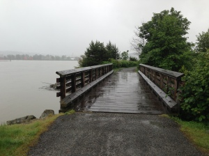 A rainy morning - Fraser River 5K